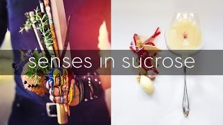 Youve Never Seen a Book Like this! Senses in Sucrose: The Art of Emotions in Sweet Form