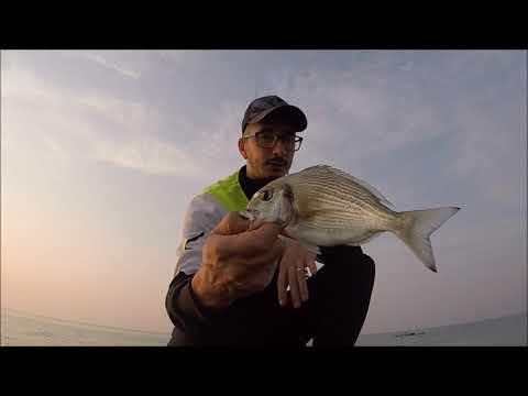 Pesca Alle Orate Dal Pontile A Jesolo Lido