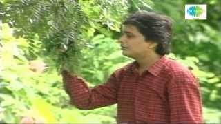 Ja Jare Ja Pakhi | Bengali Song | Shyamal Mitra