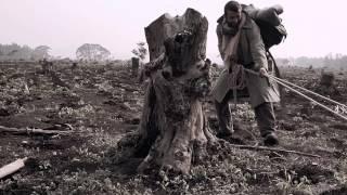 elClubo - El Camino [video oficial]
