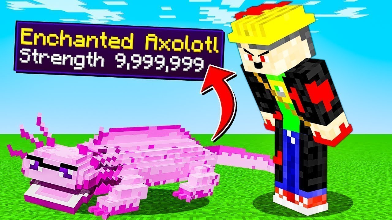 Minecraft but you can enchant axolotls