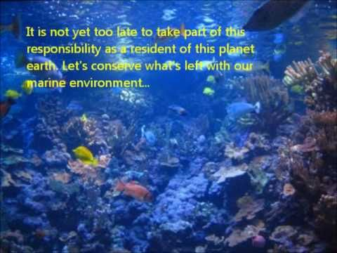 Save Our Marine Environment