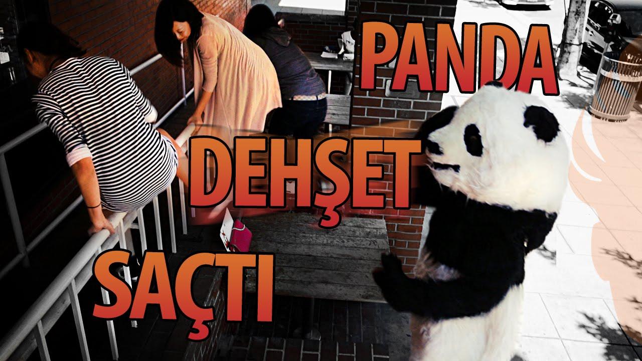 Download Panda Dehşet Saçtı - Hayrettin