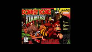Donkey Kong Country - DK Island Swing - Orchestral Remake