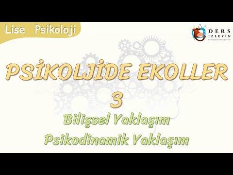 PSİKOLOJİDE EKOLLER - 3 / BİLİŞSEL YAKLAŞIM - PSİKODİNAMİK YAKLAŞIM