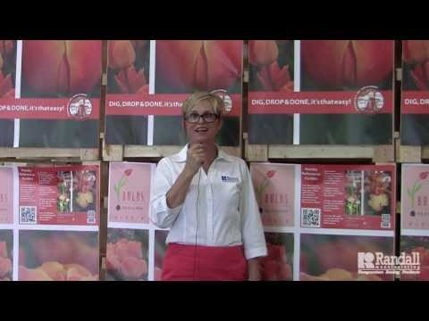Kristine On Location: Industrial Curtains at Holland Bulb Farms | Randall Manufacturing
