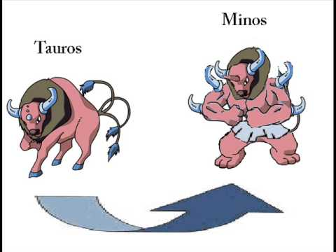 Tauros evolution: Minos!Pokemon! - YouTube