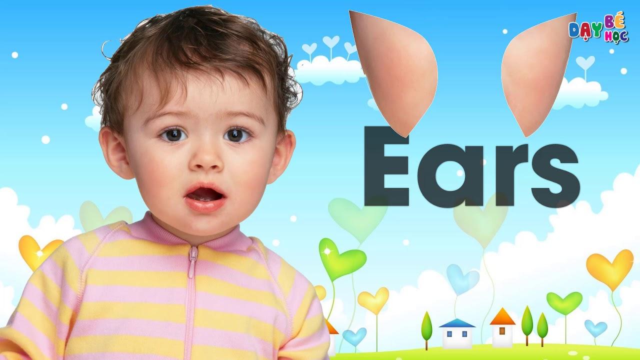 Dạy bé tập nói bộ phận cơ thể mắt mũi miệng tai bằng tiếng Anh   Dạy bé học