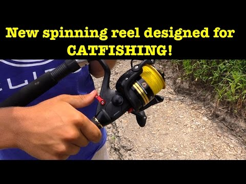 Quick Look at the new Team Catfish Gold Ring 5000 Spinning reel!
