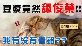 【SoybeanMilk vs. Junrong EP08】What happens after the friendly licking...?!?