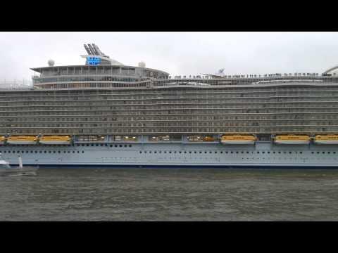 Oasis of the Seas passing Schiedam