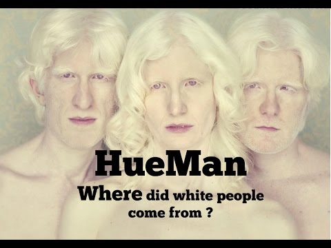 Hueman - Where did white people come from ???