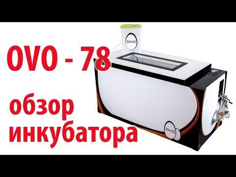 OVO-78 - обзор инкубатора \\ В деревню!