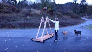 Worlds Largest Biggest Amazing Trebuchet