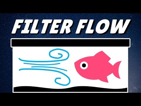 How To Reduce Aquarium Filter Flow For Fish & Axolotls
