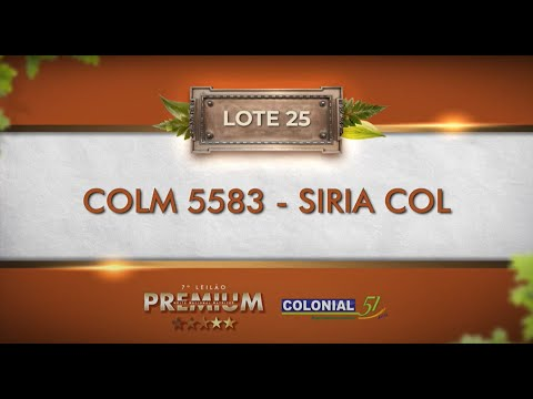 LOTE 25   COLM 5583