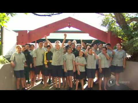 Finlayson Park School to do 40 hour Māori language challenge