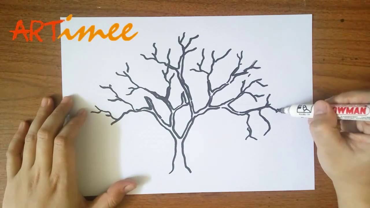 Blossom Tree Drawing: Let's Drawing A Cherry Blossom Tree ( For Beginner )