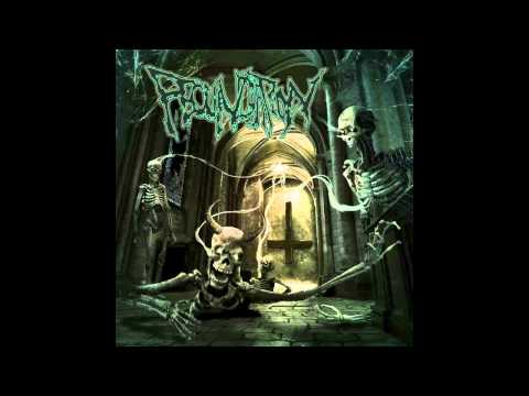 피컨데이션 Fecundation -Human Constipation
