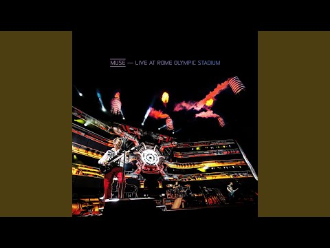 Animals (Live At Rome Olympic Stadium)