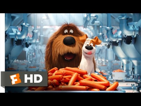 Thumbnail: The Secret Life of Pets - Sausage Factory Scene (5/10) | Movieclips