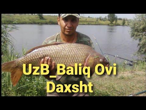 Baliq Ovi Daryoda Ushlangan сазана 28 _06_2019_г