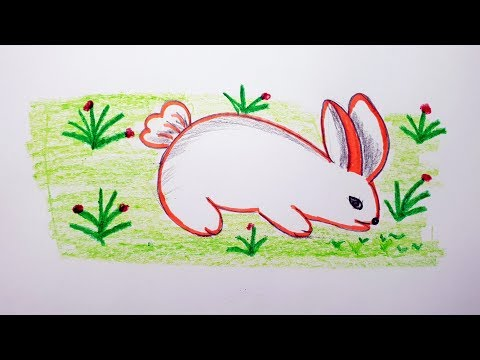 How To Draw A Rabbit Colour For Beginner's  Step By Step | Easy Rabbit Drawing