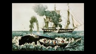 The True Story Of Moby Dick