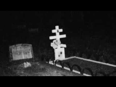I visited South Brisbane's Cemetery... (Chased out by demonic red eyes cat)