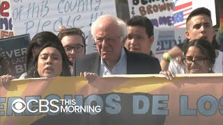 Gambar cover Bernie Sanders remains the frontrunner going into the Nevada caucus