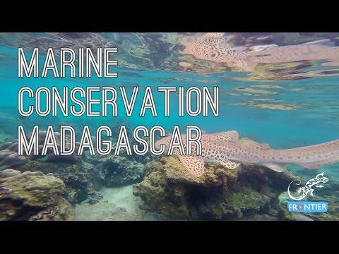 Madagascar Marine Conservation