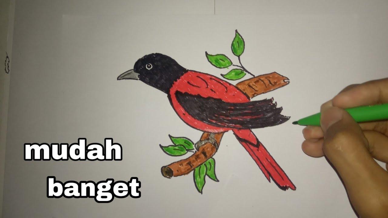 Cara menggambar burung yang mudah /// part11 - YouTube