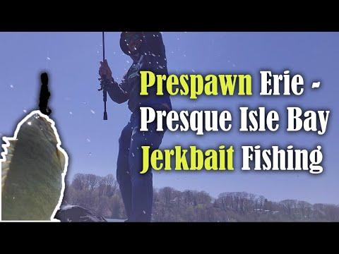 Prespawn Erie - Presque Isle Bay Jerkbait Fishing For BIG SMALLMOUTHS