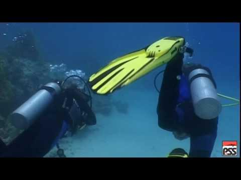 Scuba Diver 1 Fra Crop pss new