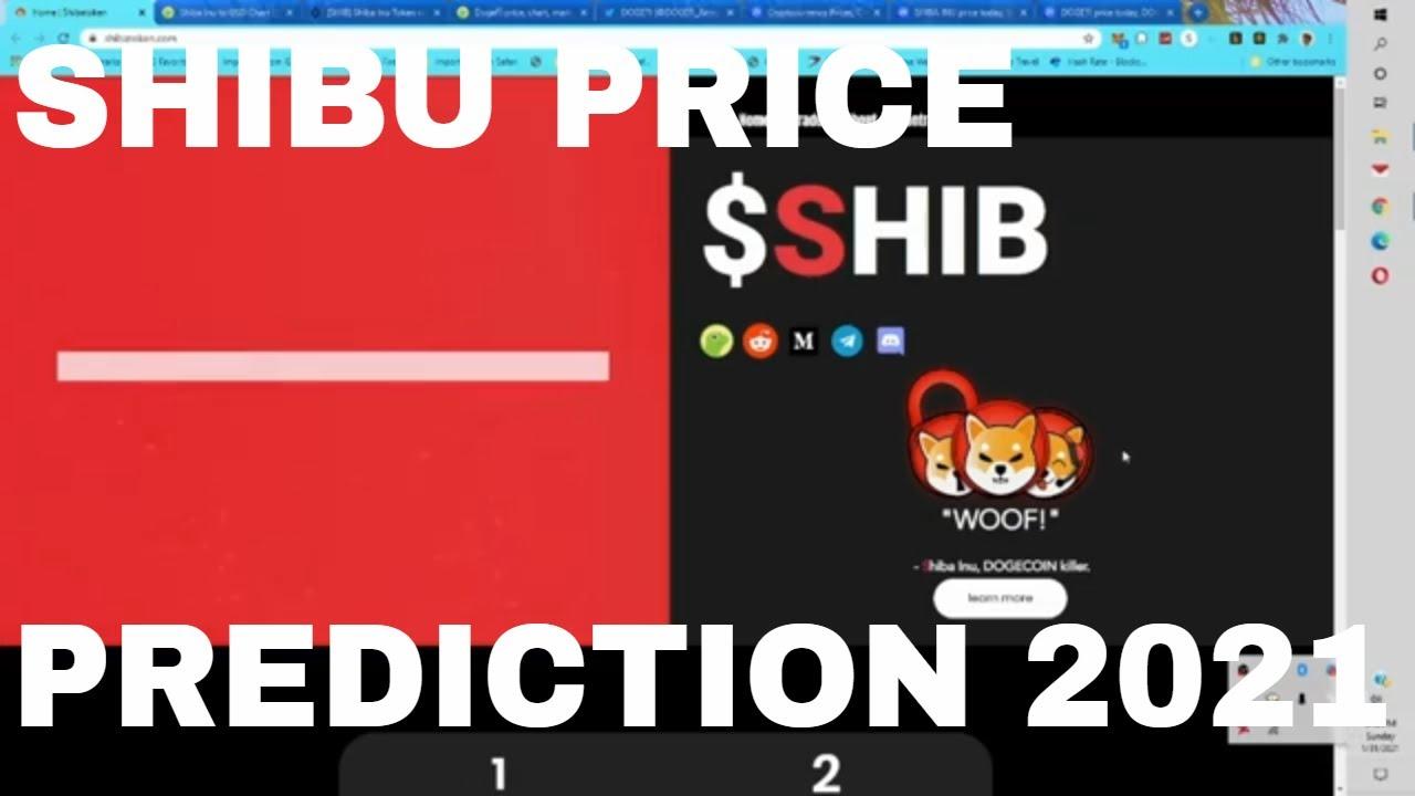 Shibu inu Coin Price Prediction 2021 Shib Crypto Coin Token Up 1000 Percent Reddit Pump What Next?