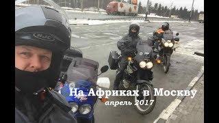 На Африках в Москву. Апрель 2017