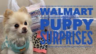 150 Pet Haul Pets At Home Trip Video Más Popular