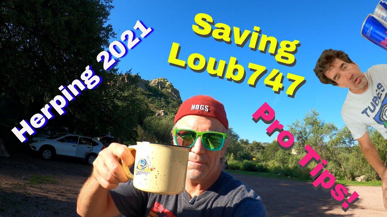Arizona herping 2021 + Helping @LouB747  & PRO TIPS!