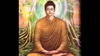 05. Meditation - Ven Udairiyagama Dhammajeewa Thero - Viriya Sambojjanga 02