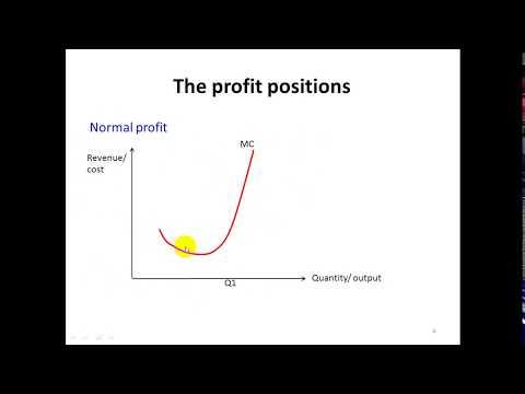 Profit Positions Str8 Economics
