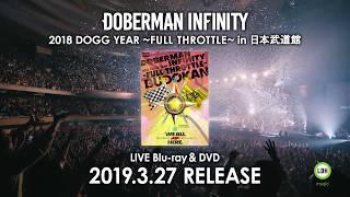 初の日本武道館公演 LIVE Blu-ray & DVD 2019年3月27日発売 DOBERMAN IN...