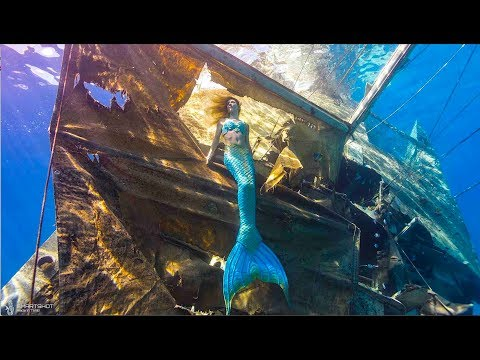 Mermaid explores shipwrecks !