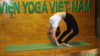 Các động tác Yoga nâng cao - Học viện Yoga Việt Nam