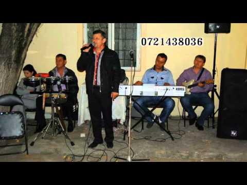 Live Formatia Ivancea (Fratii Blonzi) - Nunta Plopi [1]