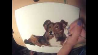Painting Time-Lapse: Custom Pet Portrait - Sheltie