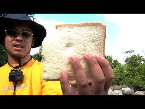 100%釣れる!食パン・フィッシング【Eng Subs】Fishing Bait Using Bread【Tilapia・テラピア】【ITSUKI】