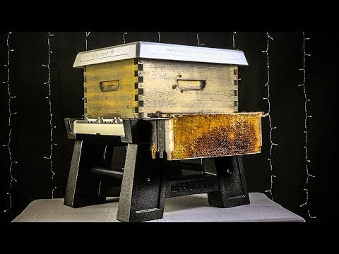 Bee Smart Hive Stand, Bottom Board System, Robbing Screen, Hive Top Cover for Honey Bees