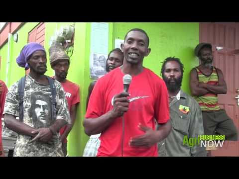 ABN 10/05/2017 Grenada farmers experience hill side dasheen production in SVG