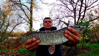 Запрыгнула в подсак Рыбалка на щуку Зимний спиннинг Универсальный спиннинг на щуку Рыбалка2021
