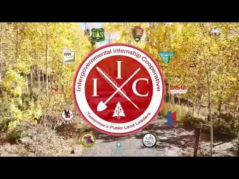 IIC Promo